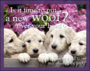 A new woof