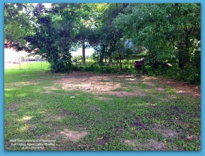 Mobile AL Home For Sale with Down Payment Assistance